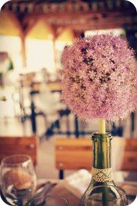 Portrait de fleuretcouleur